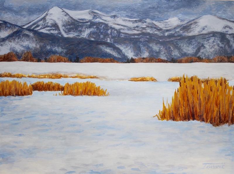 Todd Kosharek, Swan Nests