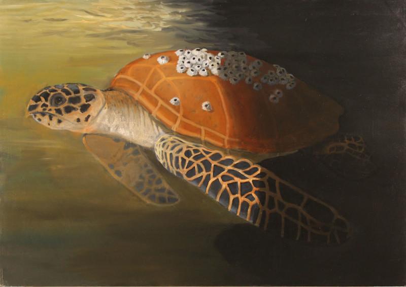 Robert McCauley, Aquarium Glass, Hide Your Good Work