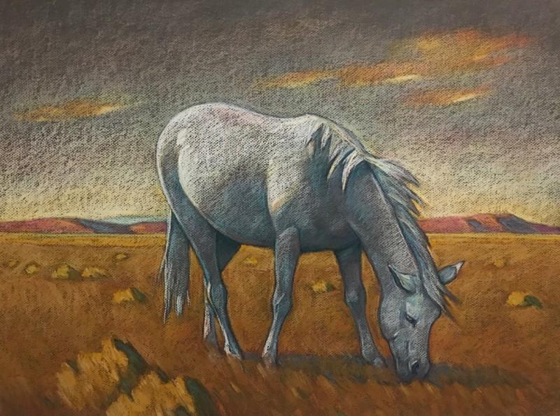 Howard Post, White Pony