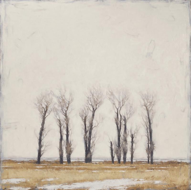 Jared Sanders, Cottonwood Sky