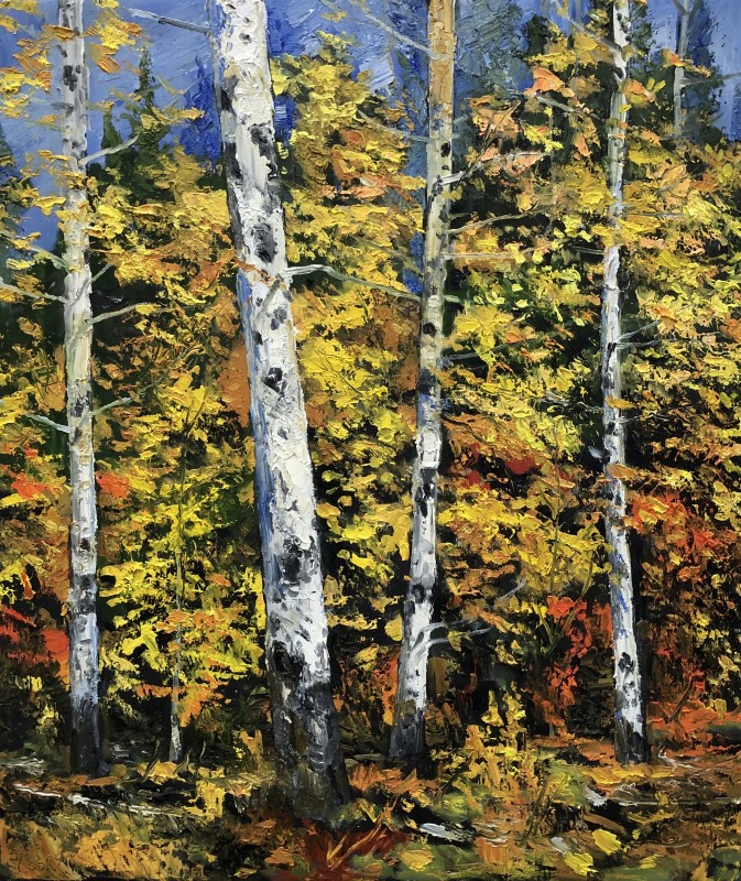 James Pringle Cook, Mt. Lemmon- Aspen