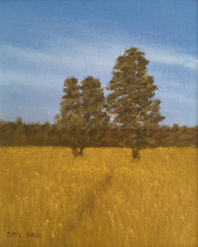 Dave Hall, The Owl Trees, Lower Ranch