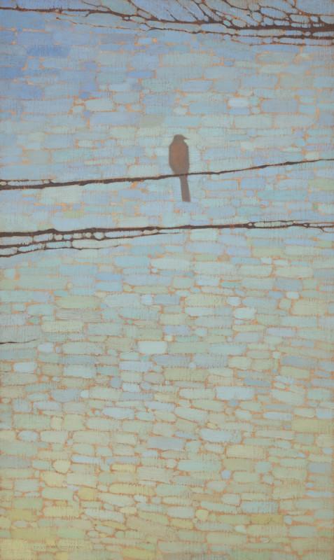 David Grossmann, Robin and Blue Sky Patterns