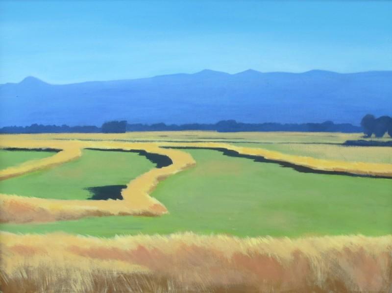 Travis Walker - Lockhart Ranch No 1