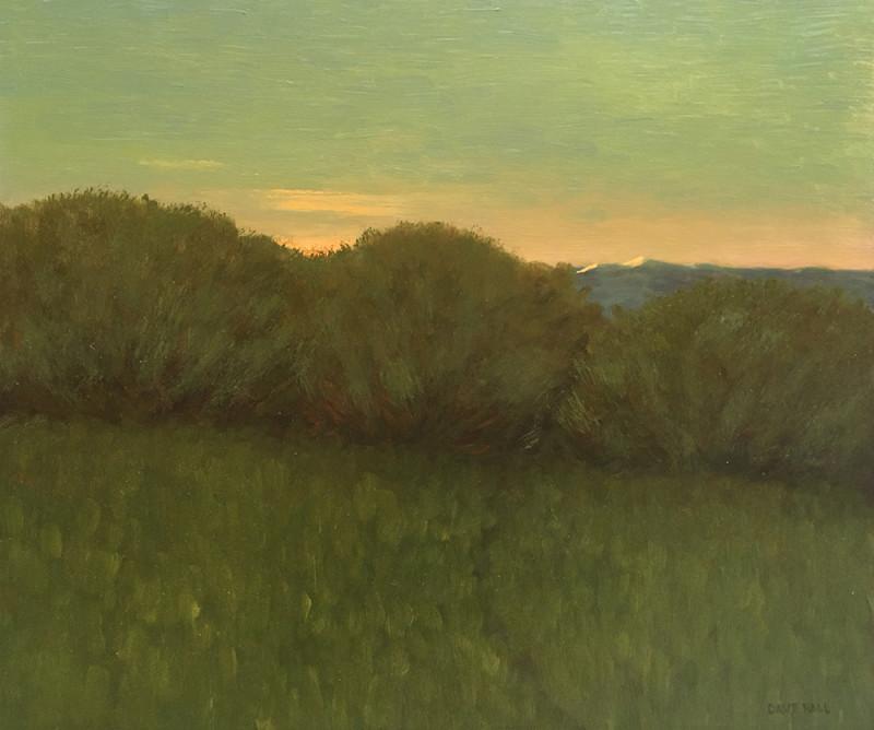 Dave Hall, Walk at First Light