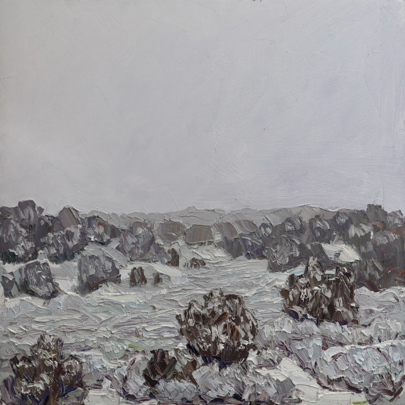 Jivan Lee, A Sea of Snow on Juniper and Sage