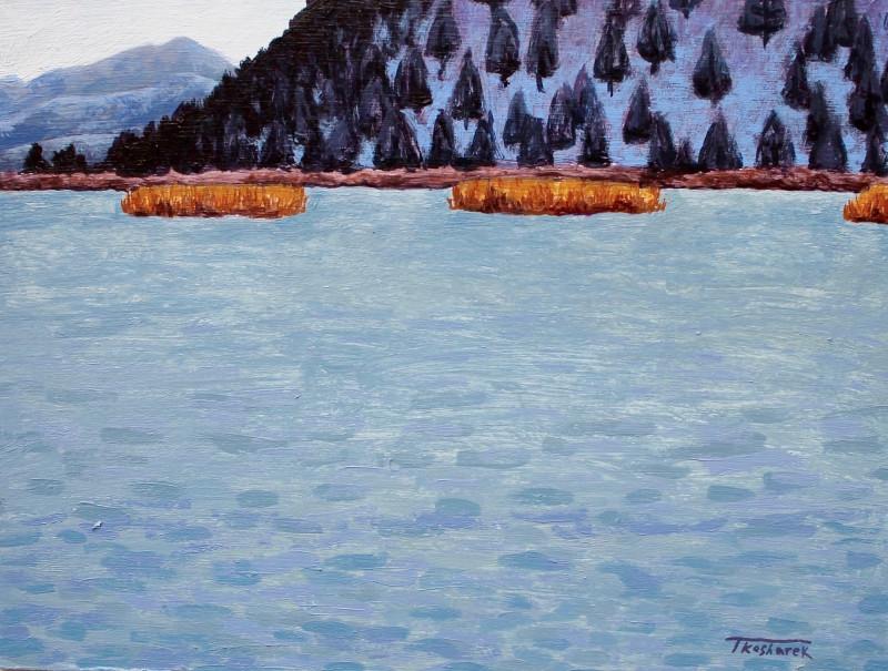 Todd Kosharek, Frozen Cattails