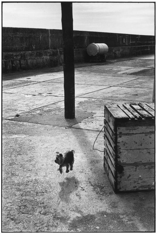 BALLYCOTTON, IRELAND, 1968