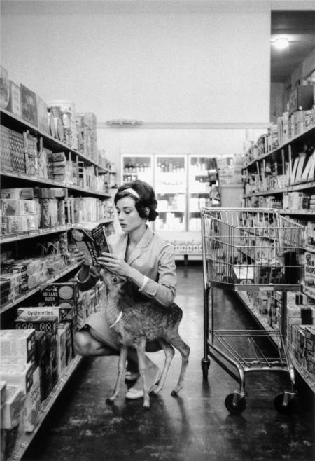 AUDREY HEPBURN AND IP THE DEER ON THE SET OF 'GREEN MANSIONS', 1958