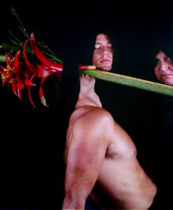 Carlos Betancourt, Back Stories at Hobe Sound ZZZ, 2004, 2004