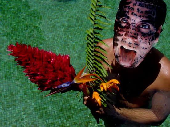Carlos Betancourt, Rincon Flamboyant Series, Bejigante en Casa Flamboyant, 2005, 2005