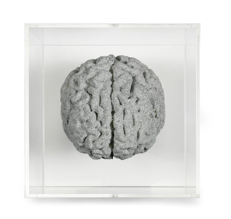 <span class=%22title%22>Grey Matter: Brain of Artist<span class=%22title_comma%22>, </span></span><span class=%22year%22>2018</span>