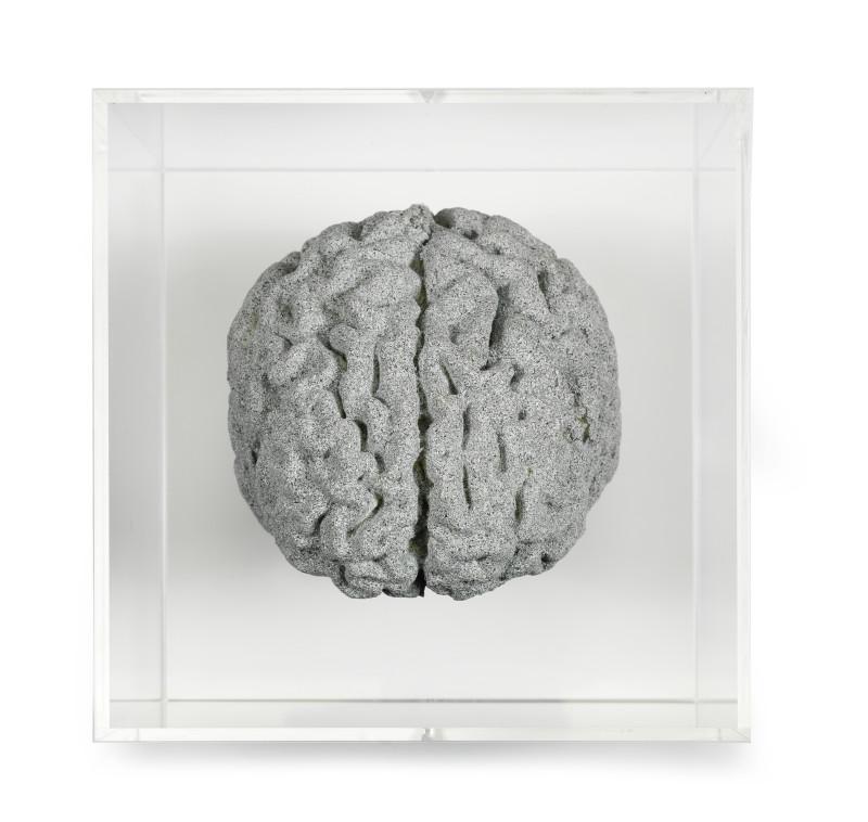 <span class=%22title%22>Grey Matter: Brain of Artist<span class=%22title_comma%22>, </span></span><span class=%22year%22>2018</span>