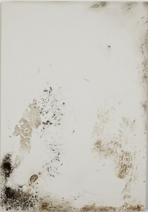 Jodie Carey, Untitled XVII, 2011