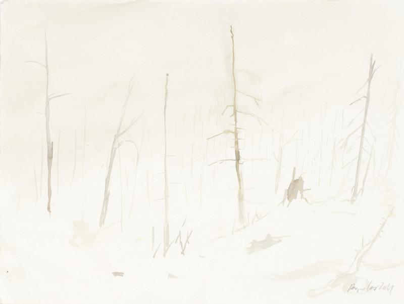 RAGNAR KJARTANSSON, Af lendum heimshryggðarinnar í Bresku Kólumbíu / From the Valley of World-Weariness in British Columbia (VI), 2011