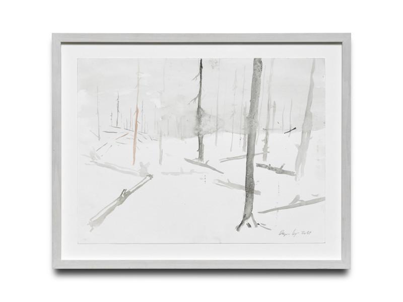 RAGNAR KJARTANSSON, Af lendum heimshryggðarinnar í Bresku Kólumbíu / From the Valley of World-Weariness in British Columbia (V), 2011