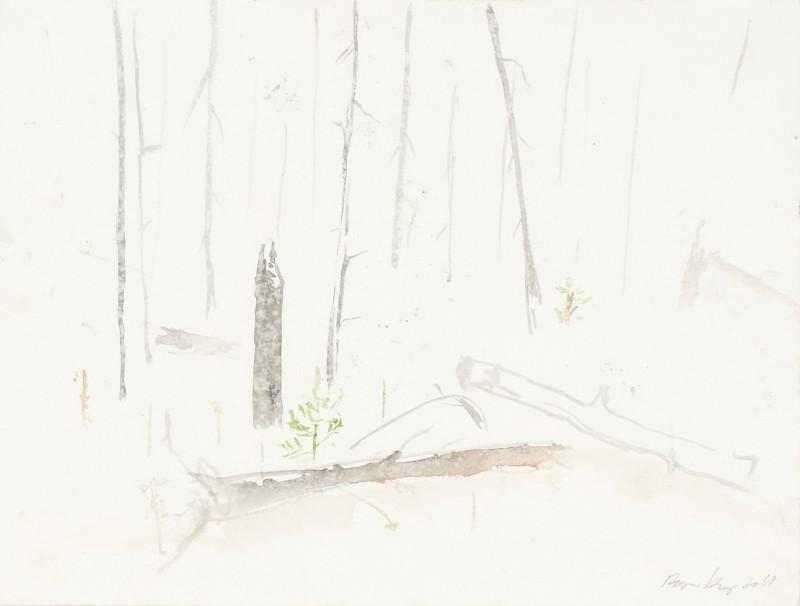 RAGNAR KJARTANSSON, Af lendum heimshryggðarinnar í Bresku Kólumbíu / From the Valley of World-Weariness in British Columbia (IV), 2011