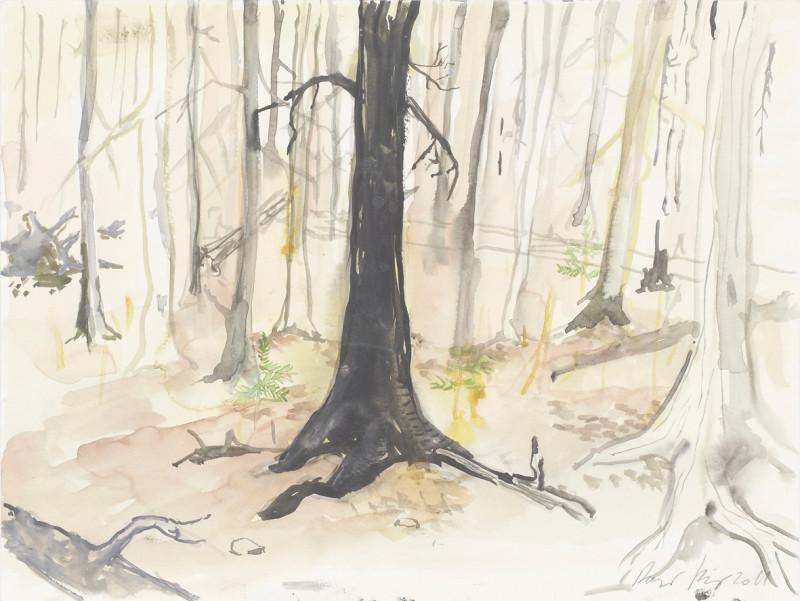 RAGNAR KJARTANSSON, Af lendum heimshryggðarinnar í Bresku Kólumbíu / From the Valley of World-Weariness in British Columbia (VIII), 2011