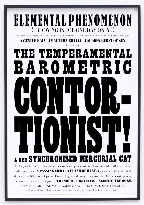 JANICE KERBEL, Remarkable: Barometric Contortionist, 2007