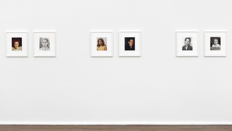 RONI HORN, a.k.a. (GROUP II), 2008-09