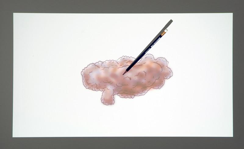 EGILL SÆBJÖRNSSON, The Picture Draws Us, 2014