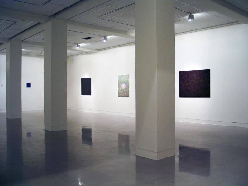 EGGERT PÉTURSSON, Floral Spectrums 1988 – 2003