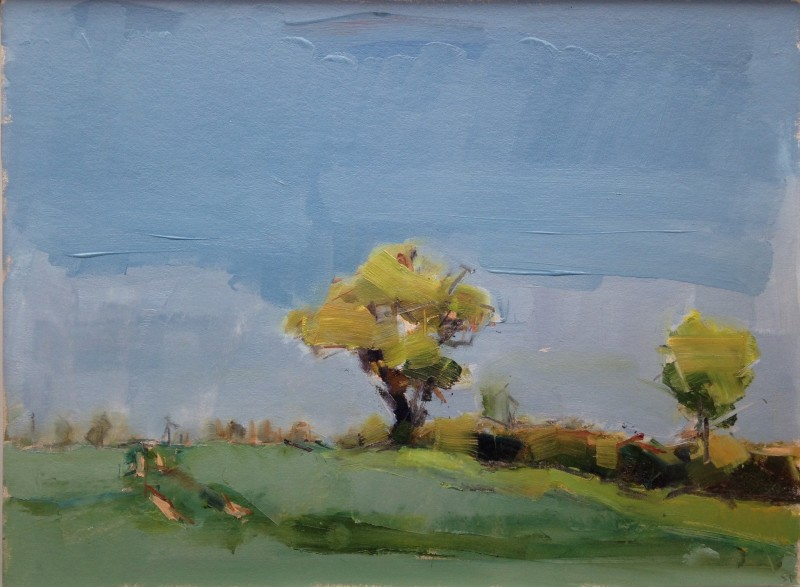 Stephen Palmer, Tree, Suffolk, 2014