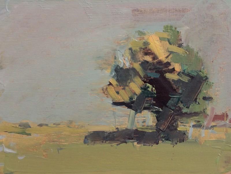 Stephen Palmer, Tree, 2015
