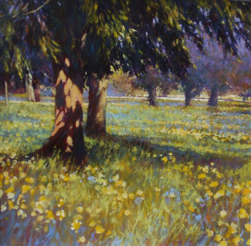 John Hammond, SWAc, Spring