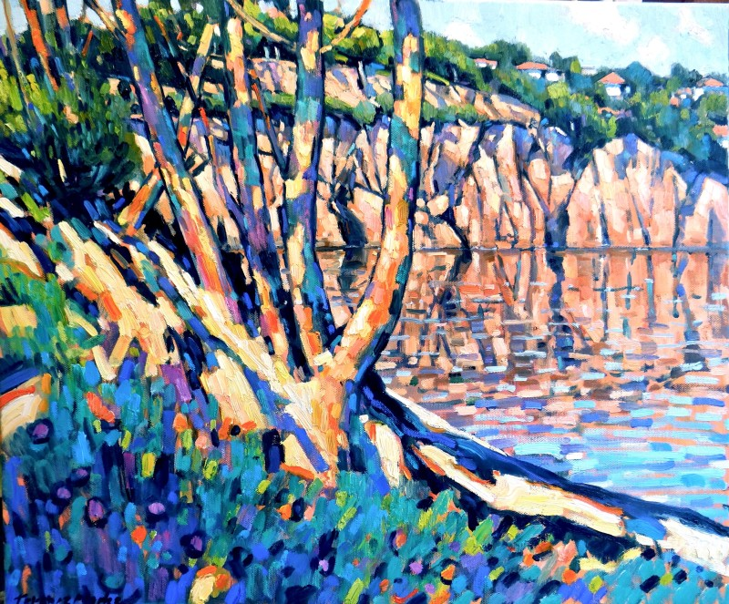 Terence Clarke, The little Bay near Agay