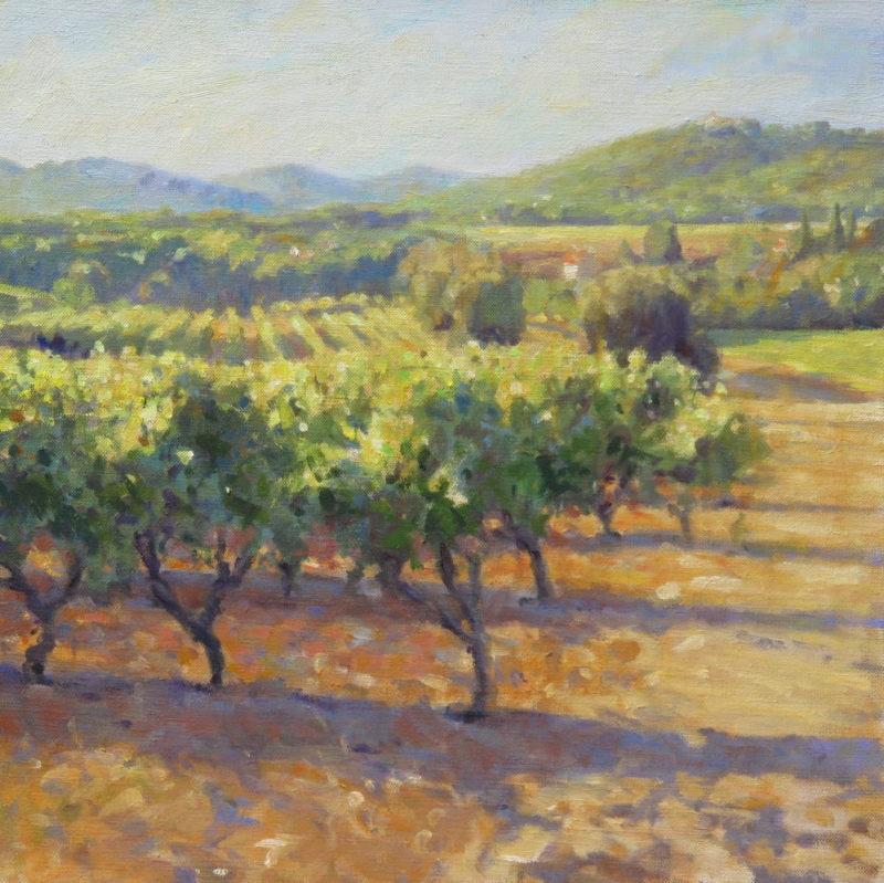 Edward Noott RBSA, Vineyards in Provence