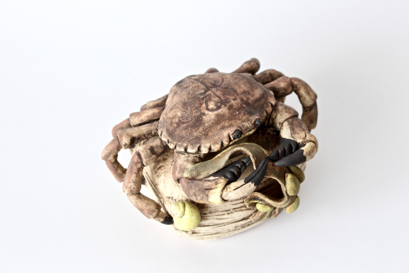 Lesley Anne Greene, Crab with Seaweed