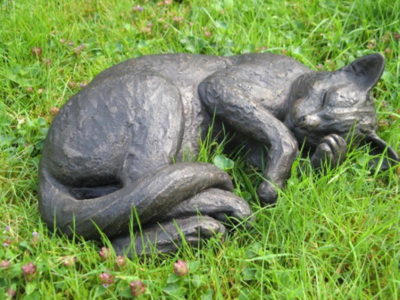 Suzie Marsh ARBS, Merlin - sleeping cat