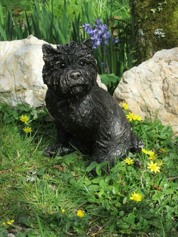 Suzie Marsh ARBS, Poppy - Sitting Cairn Terrier