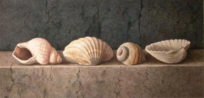 Nigel Ashcroft, Shells