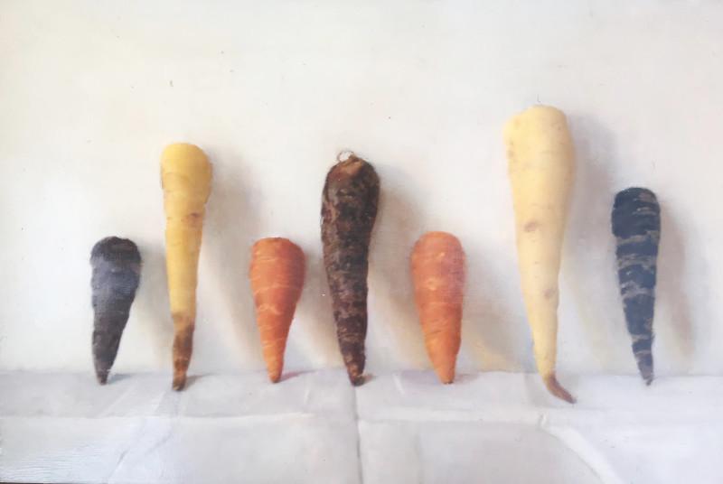 Kate Verrion, Heritage carrots