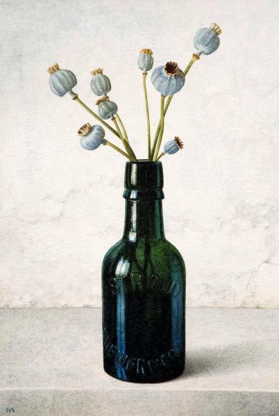 Nigel Ashcroft, Poppy-heads