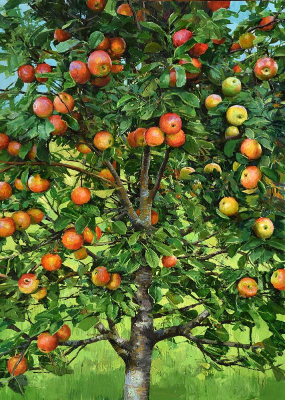 Alan Thompson, Apple tree