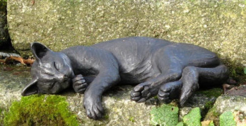 Suzie Marsh ARBS, Phoebe - sleeping cat with hanging paw