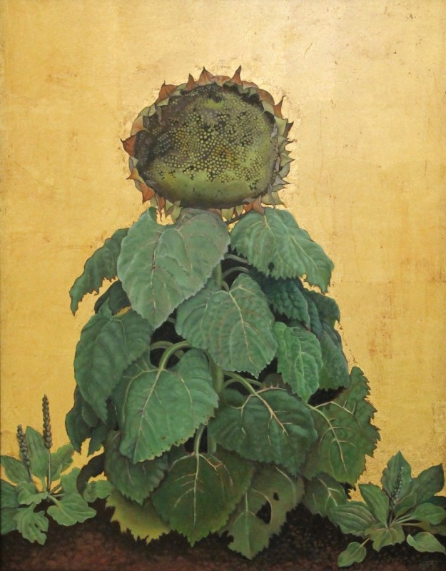 Marcelle Milo Gray, Old sunflower