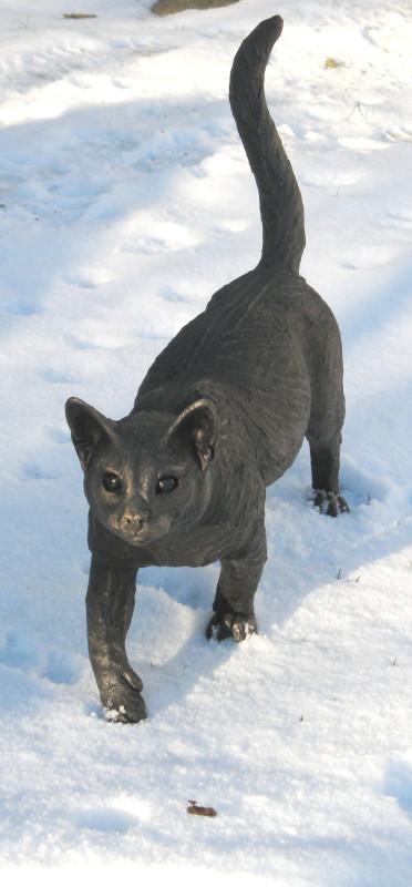 Suzie Marsh ARBS, Ben - Walking cat