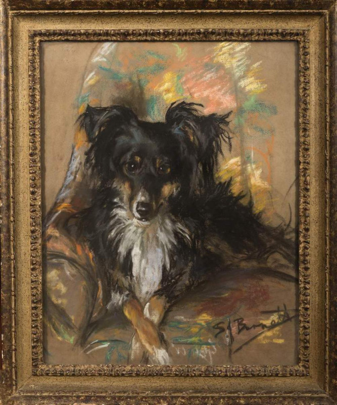 S J Burnett, Collie