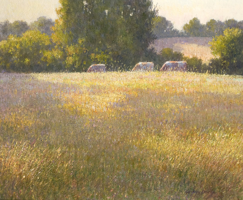 Greg Davies, Late afternoon in south west France