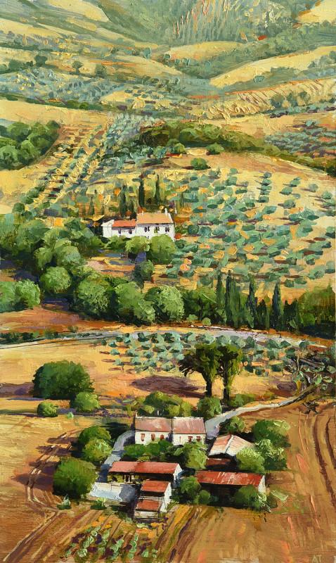 Alan Thompson, Olive groves near Assisi
