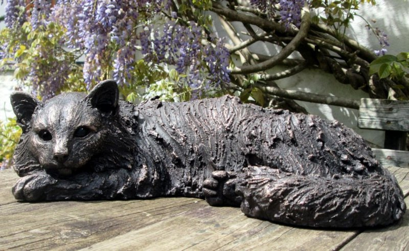 Suzie Marsh ARBS, Beignet - long haired cat