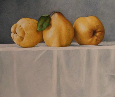 Nigel Ashcroft, Quinces on a White Cloth