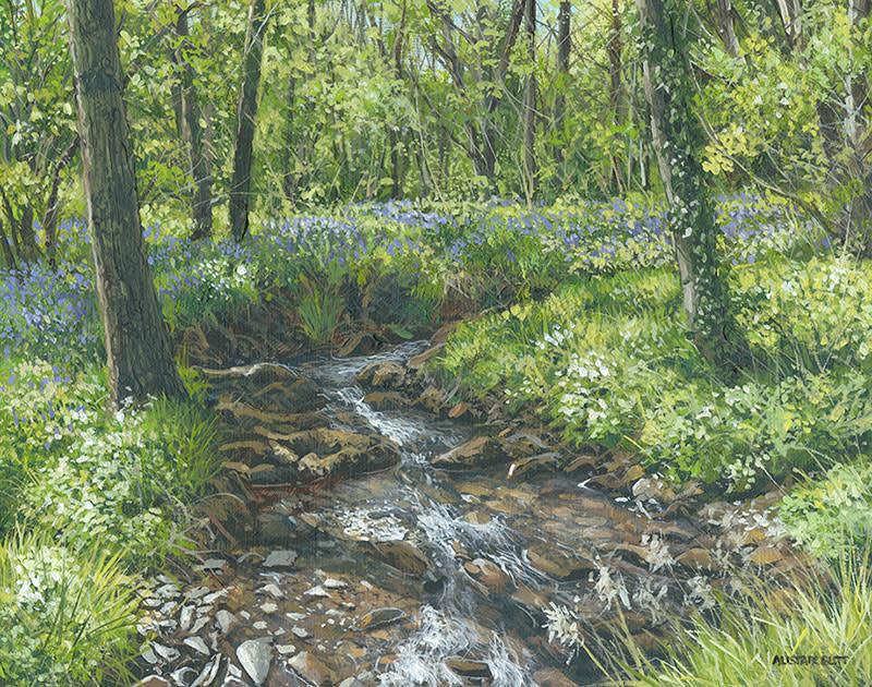 Alistair Butt RSMA, Bluebells beside the stream