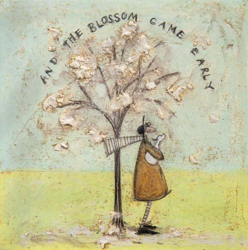 Sam Toft, And the blossom came early
