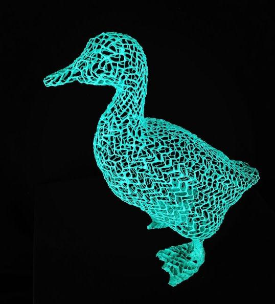 Eka Acosta, Duck
