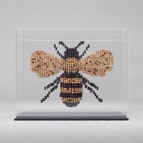Natasja van der Meer, Bee, 2018